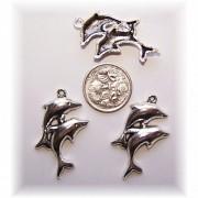 dolphin charm #3