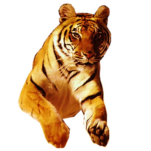 tiger 1 craft film cutouts