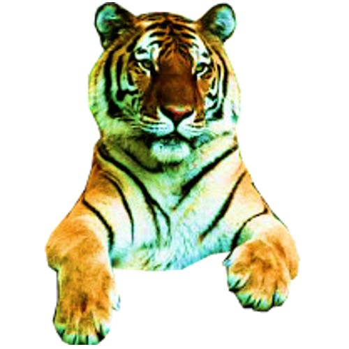 tiger 2 craft film cutouts