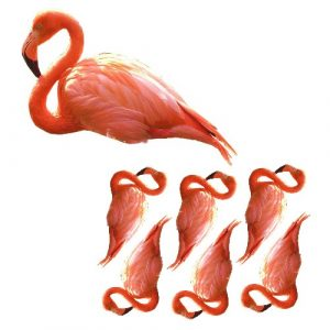 flamingo film designs