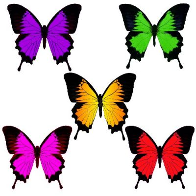 butterfly film cut out wings 15c