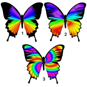 chakra butterfly craft film designs