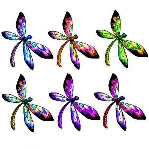 pastel dragonfly craft film designs