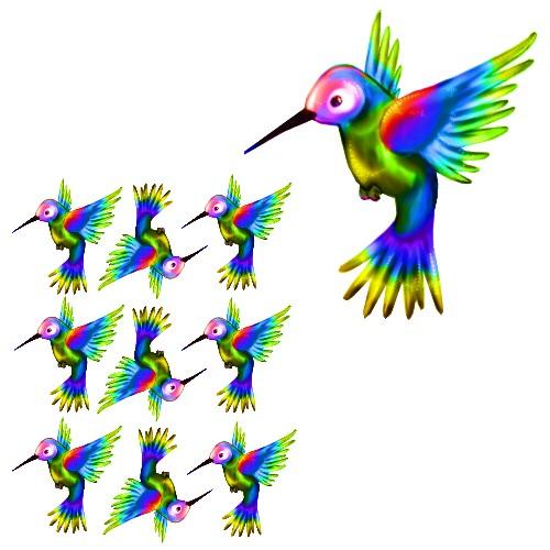 rainbow hummingbird craft film designs