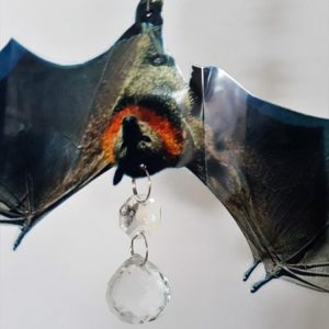 crystal suncatcher bat #1