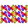 butterfly film designs c1b