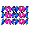 butterfly film designs c1c
