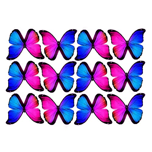 butterfly film designs c1c