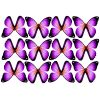 butterfly film designs c1ebutterfly film designs c1e
