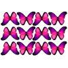 butterfly film designs c1f