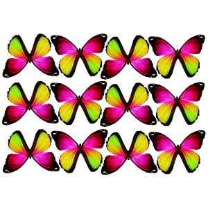 butterfly film designs c1g