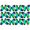 butterfly film designs c1gh