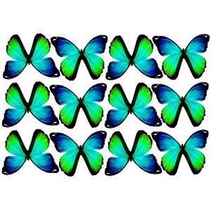butterfly film designs c1gh