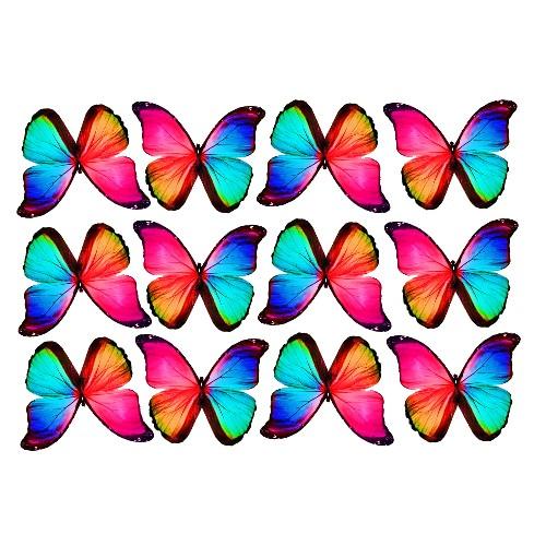butterfly film deaigns #20